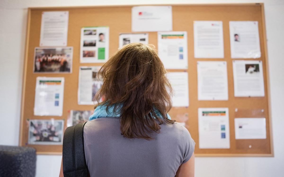 woman-looking-at-the-bulletin-board